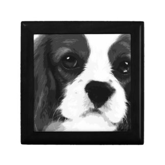 A black and white Cavalier king charles spaniel Gift Box