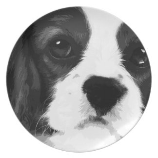 A black and white Cavalier king charles spaniel Plate