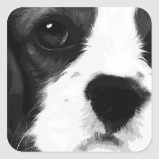 A black and white Cavalier king charles spaniel Square Sticker