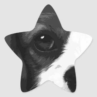 A black and white Cavalier king charles spaniel Star Sticker