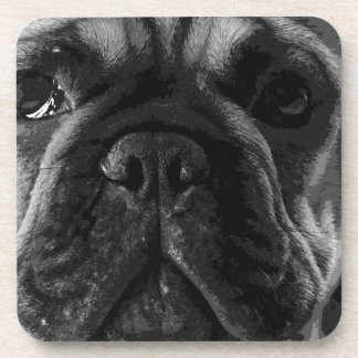 A black and white French bulldog Coaster