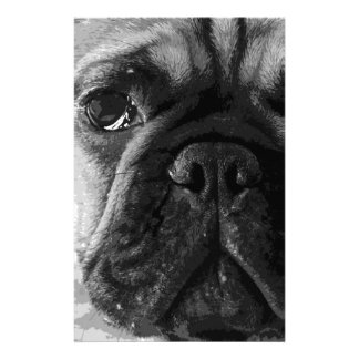 A black and white French bulldog Stationery