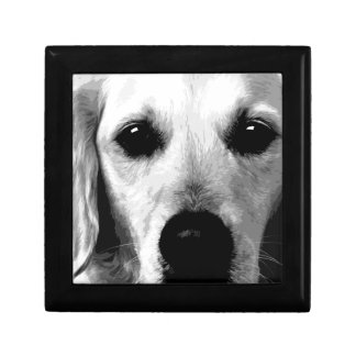A black and white Golden retriever Gift Box