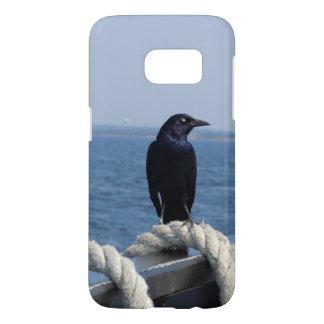 A Black Bird on the Ferry