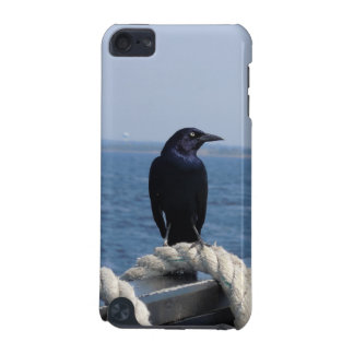 A Black Bird on the Ferry iPod Touch 5G Cover
