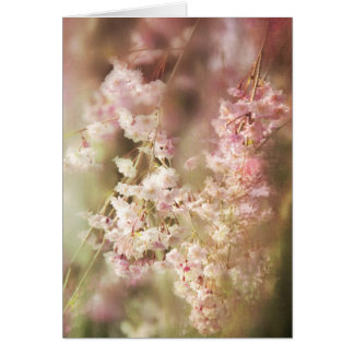 A Blur Of Pink Weeping Willow Greeting Card