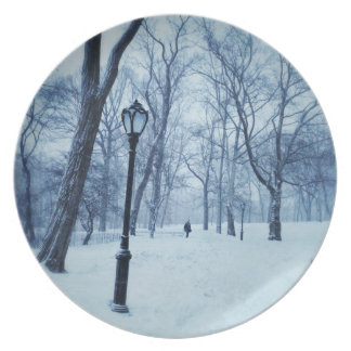 A Blustery Walk In The Park Party Plate