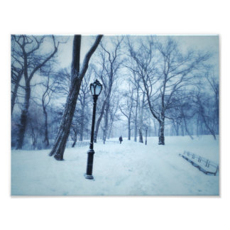 A Blustery Walk In The Park Photo Print