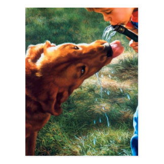 A Boy and his Dog Water Hose Thirst Colorful Postcard