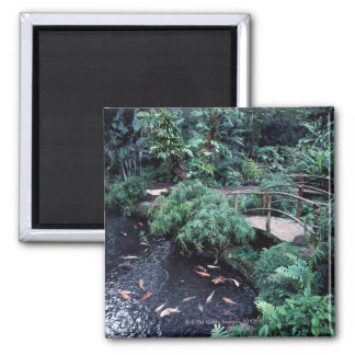 A bridge over a goldfish pond surrounded by square magnet