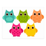A Bright Bunch of Owls Post Card