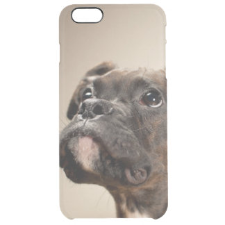 A Brindle Boxer puppy looking up curiously. Clear iPhone 6 Plus Case