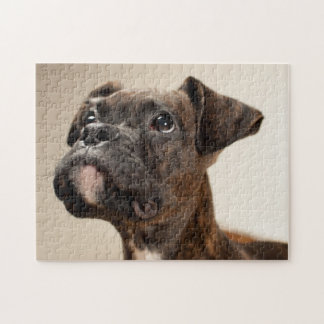 A Brindle Boxer puppy looking up curiously. Jigsaw Puzzle