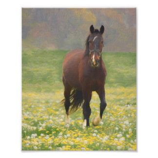 A Brown Horse in a Field with Dandelions Photo Print