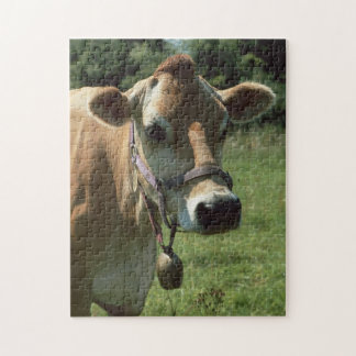 A Brown Jersey Cow In Summer Meadow jigsaw Puzzle
