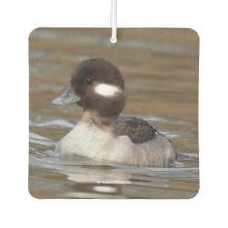 A Bufflehead Duck Swims By Car Air Freshener