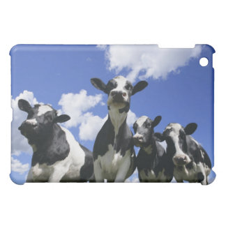 A bugs eye view of four young calves iPad mini covers