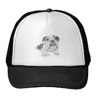 A Bulldog Puppy Drawing Cap