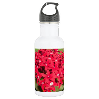 A bunch of small red flowers 532 ml water bottle