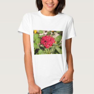 A bunch of small red flowers t-shirt