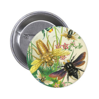 A Buzz of Beautiful Bees Button