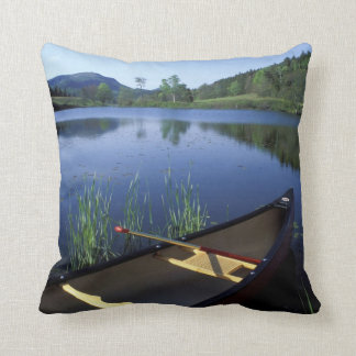 A canoe rests on the shore of Little Long Pond Cushion