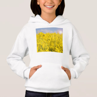 A canola field in spring