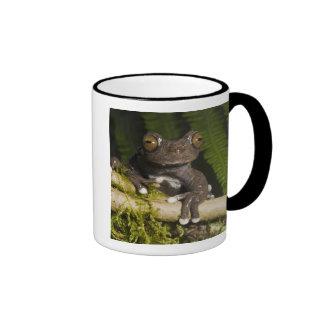 A captive Tapichalaca Tree Frog (Hyloscirtus Ringer Coffee Mug