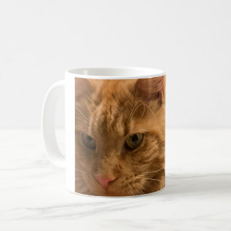 A cat A day keeps the doctor away! Coffee Mug