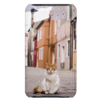 A cat in the streets of Burano, Italy.  2006. iPod Touch Covers
