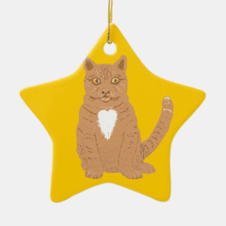 A cat on a star shaped ornament