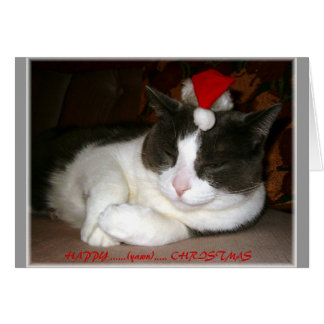A Cat's Christmas Wish Greeting Card
