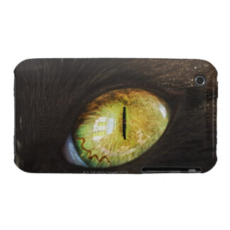 A Cat's Eye iPhone 3 Covers