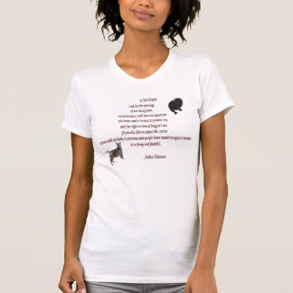 A Cat's Prayer Ladies Scoop t-shirt
