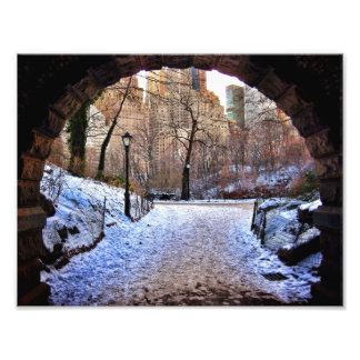 A Central Park Bridge In Winter Photo Print