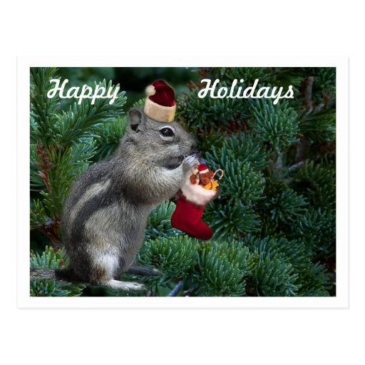 A Cheeky Christmas Chipmunk Post Cards