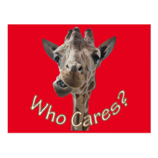 A cheeky Giraffe with attitude Postcard
