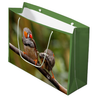 A Cheeky Pair of Zebra Finches Large Gift Bag