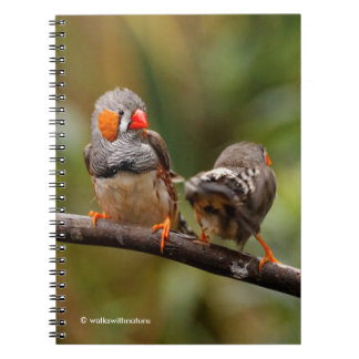 A Cheeky Pair of Zebra Finches Notebooks