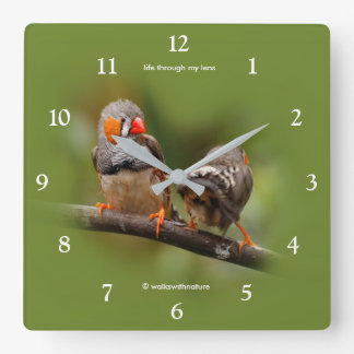 A Cheeky Pair of Zebra Finches Square Wall Clock