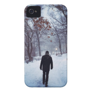 A Chilly Path In Central Park iPhone 4 Case-Mate Case