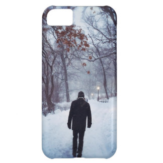 A Chilly Path In Central Park iPhone 5C Case