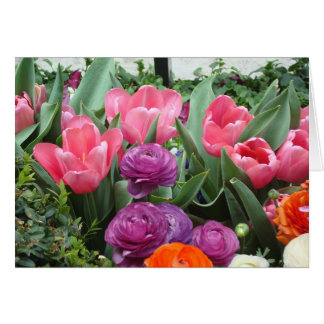 A Chorus of Pink Tulips Note Cards