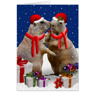 A Christmas Kiss Card