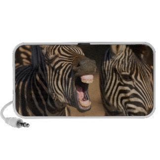 A close-up of a Zebra showing its teeth Mp3 Speaker