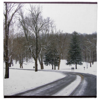 A Cold Winter Afternoon Drive Napkin