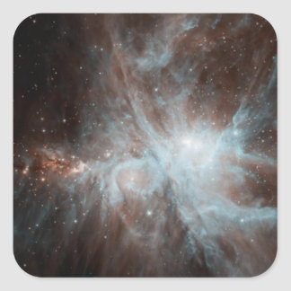 A colony of hot young stars in the Orion Nebula Square Sticker