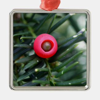 A cone of a yew (Taxus baccata) Metal Ornament