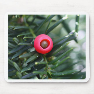 A cone of a yew (Taxus baccata) Mouse Pad