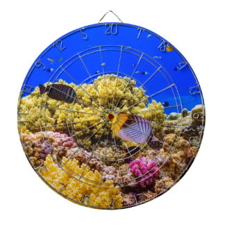 A Coral Reef in the Red Sea near Egypt Dartboard